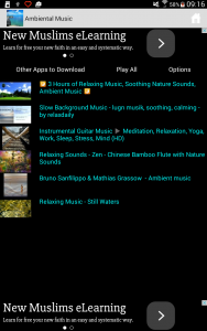 Vertical view of the main playlist screen.